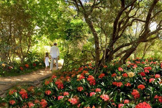 Babylonstoren Garden Tours Franschhoek