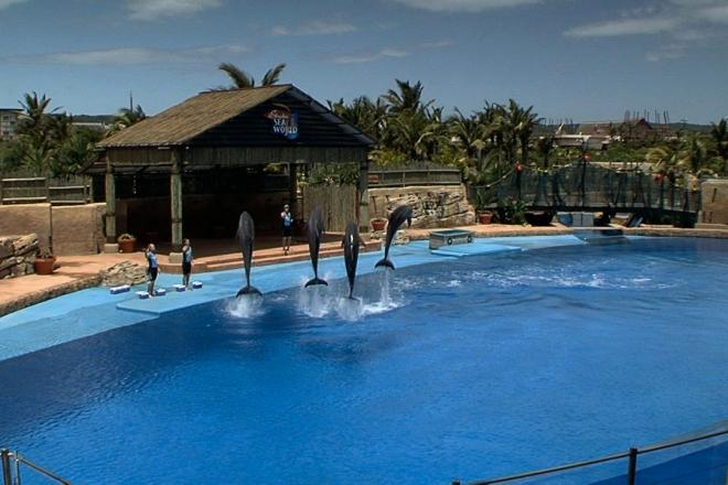 Where to stay Durban. Travel guide Durban