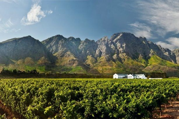 Holden manz wine estate franschhoek south africa for Jardin winery south africa