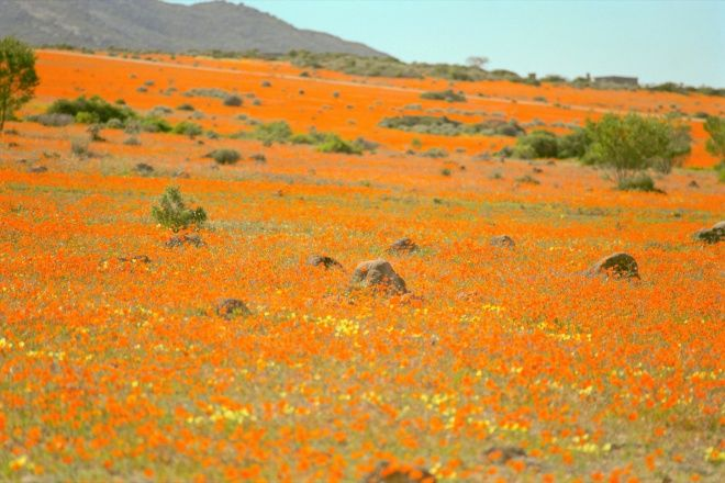 Namaqualand Where To Stay