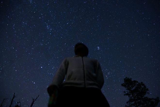 Alone in the dark - 2 4