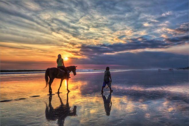 Top 6 Beach Horse Trails In South Africa