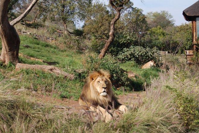 Pretoria Zoo Pretoria