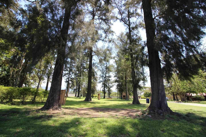 Asante Sana Holiday Village Nelspruit