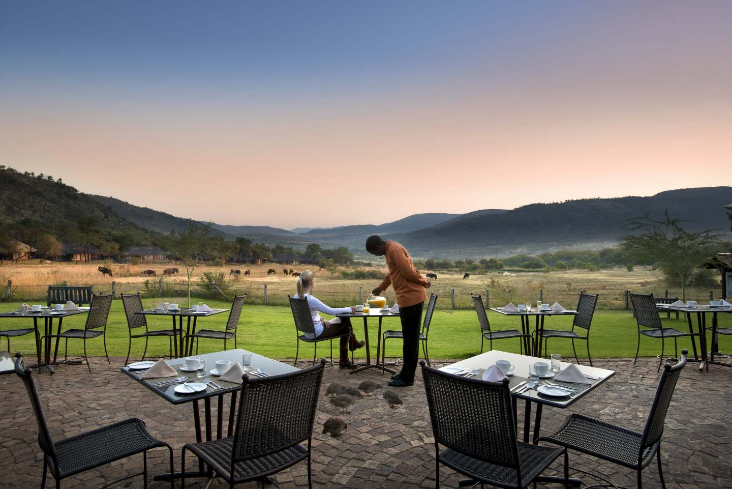 Bakubung Bush Lodge Pilanesberg South Africa