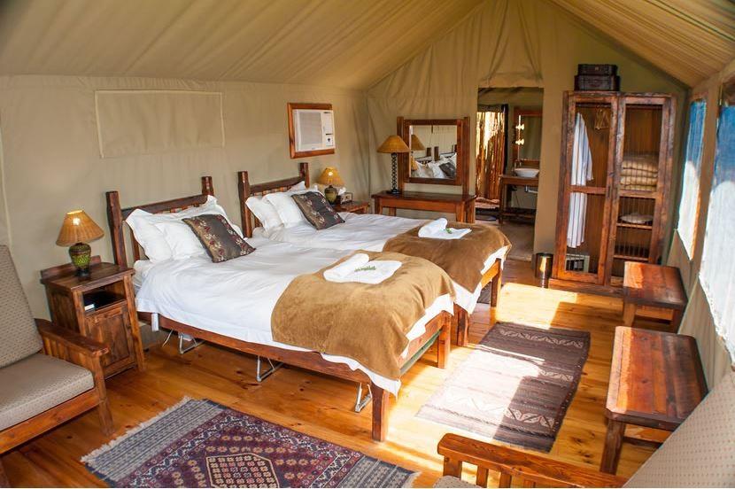 Buffelsdrift Game Lodge Oudtshoorn South Africa