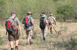 Indawo Wilderness Trail Balule Game Reserve