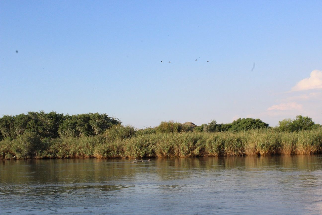 Kalahari Bike Stop Amp Backpackers Groblershoop South Africa