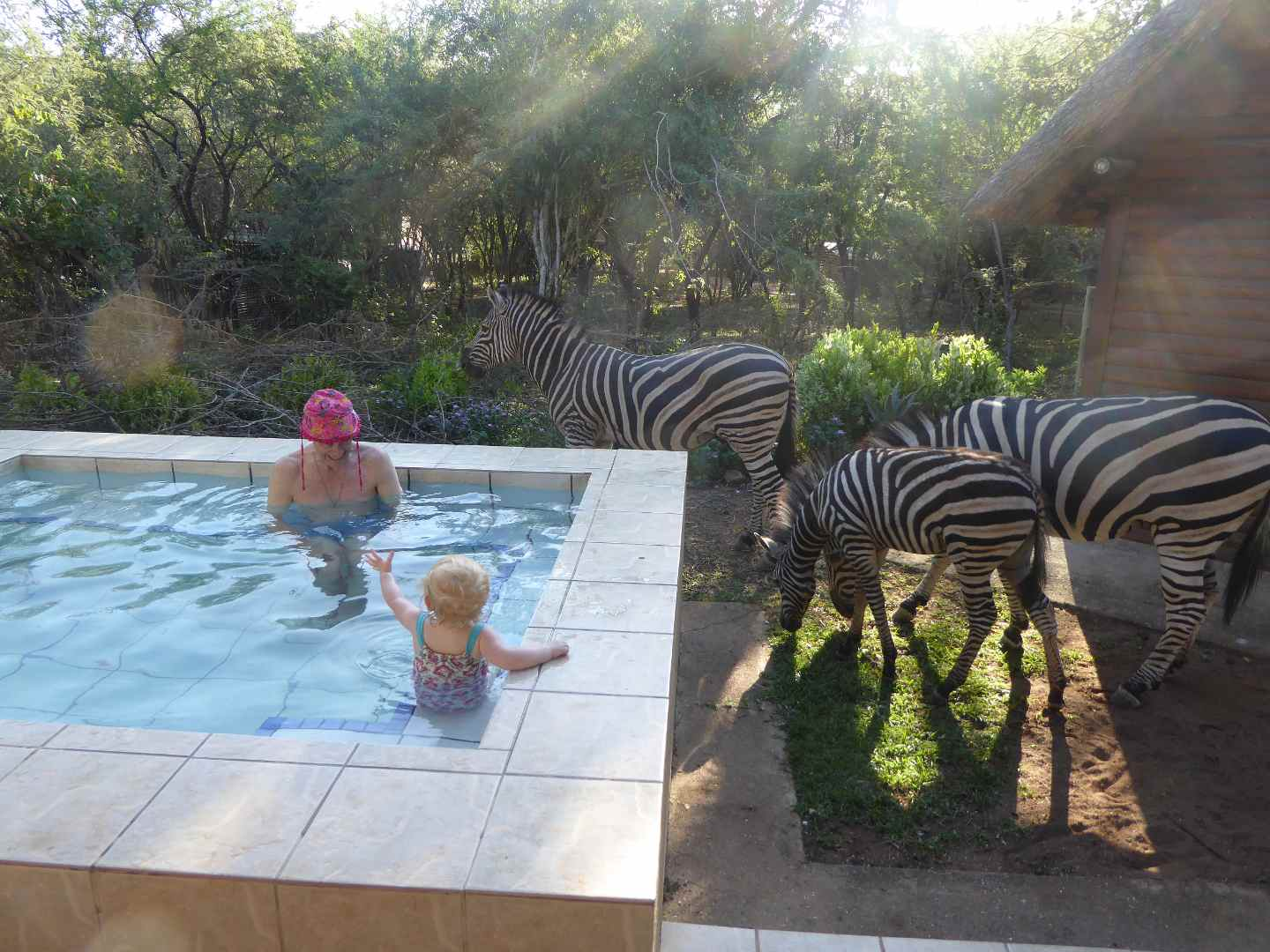 Kruger Cottage Marloth Park