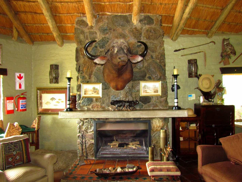 mafigeni safari lodge makutsi conservancy south africa