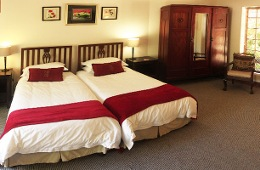 The suite features two large single beds