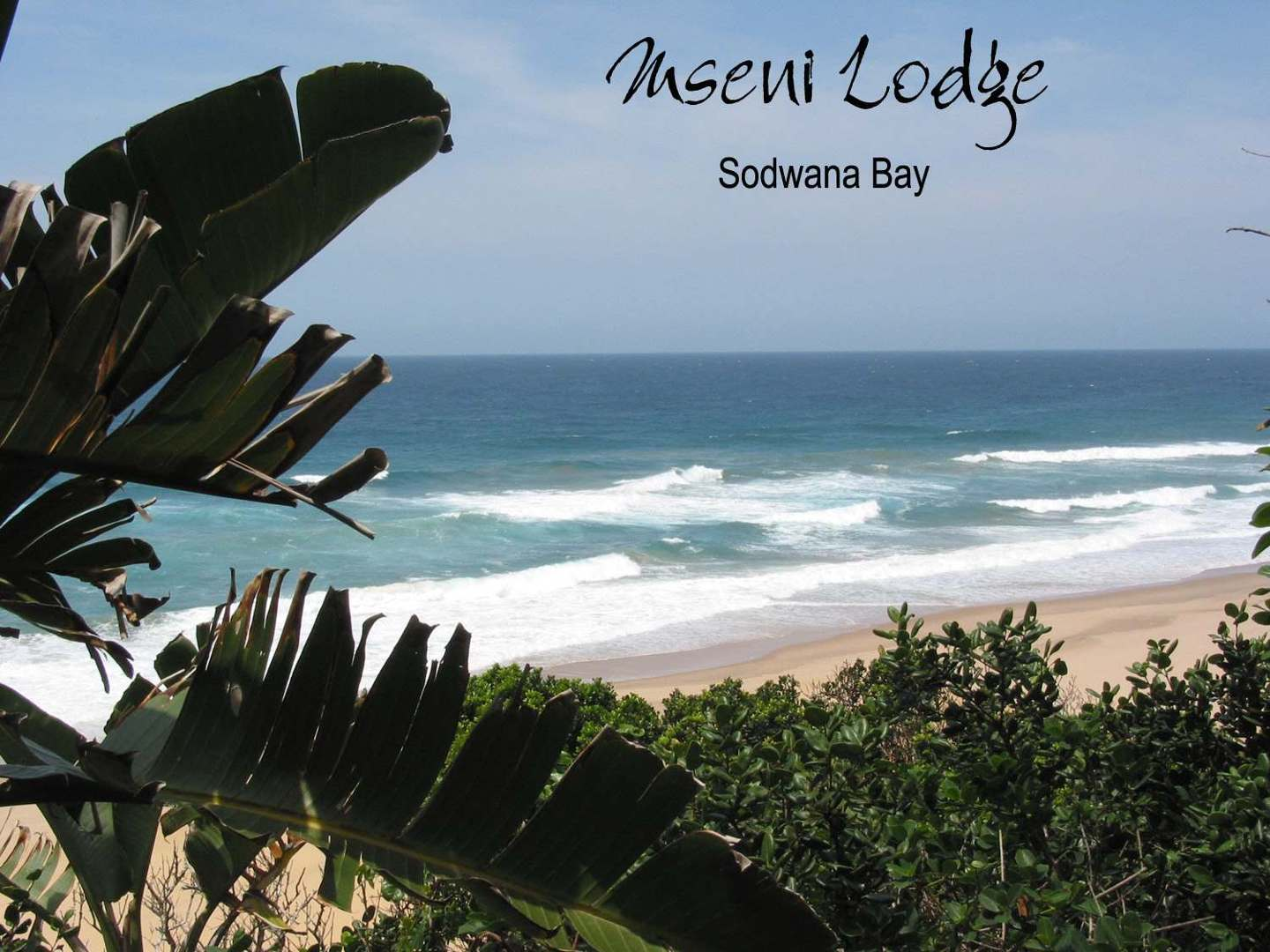 Mseni Lodge Sodwana Bay South Africa