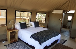 luxury air conditioned safari tents with a view over the well used water hole.