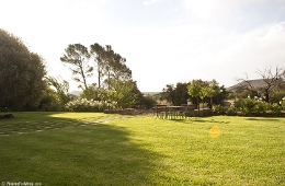 Olive Hill Country Lodge Bloemfontein