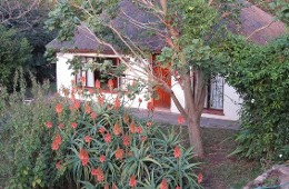 Our Little Family Bed & Breakfast