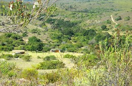 Pabala Game Farm Humansdorp