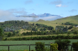 Pennygum Country Cottages Underberg