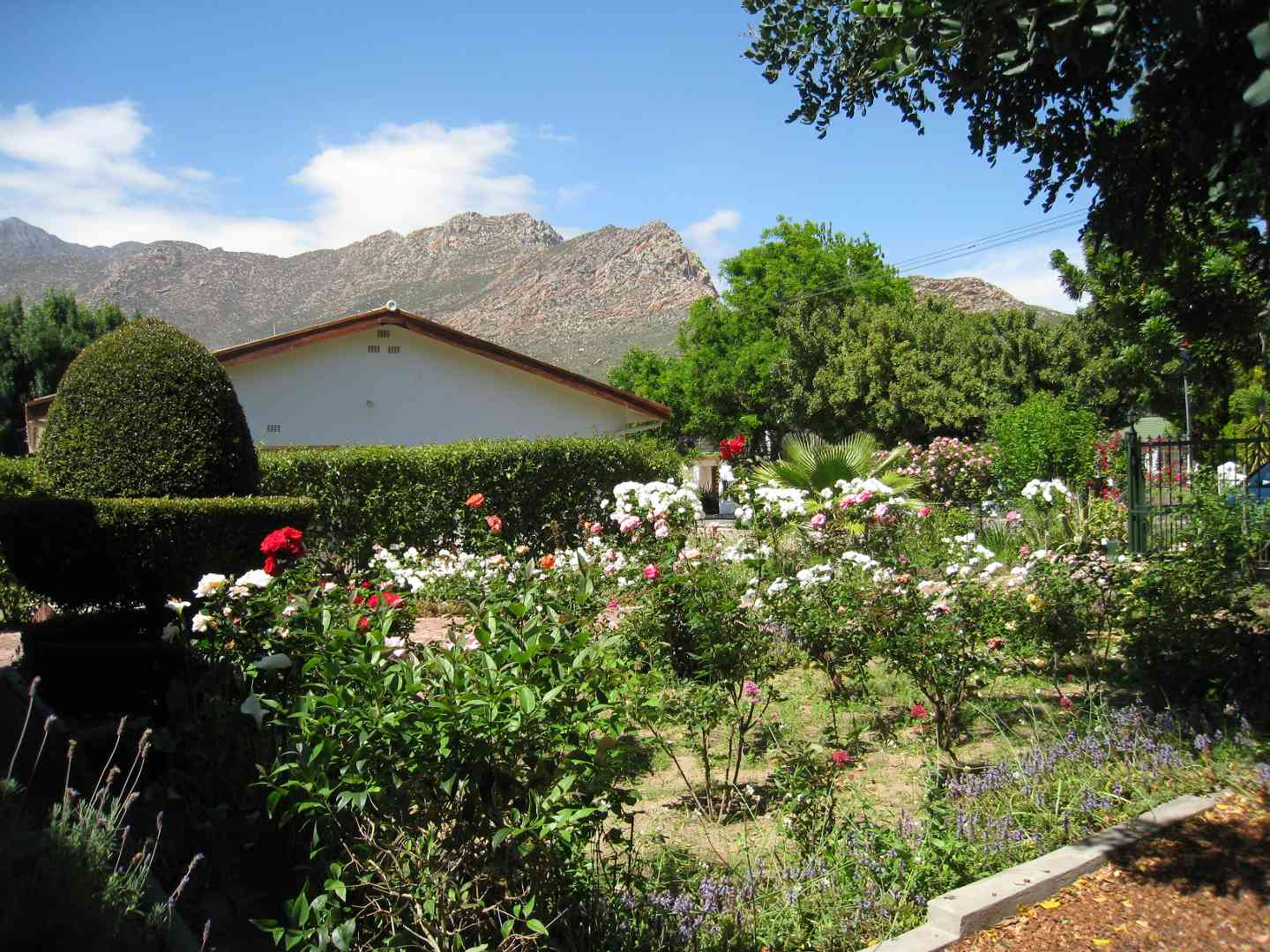 Rose cottage montagu montagu south africa for Rose cottage