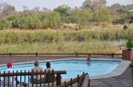 Sabie River Bush Lodge Kruger National Park