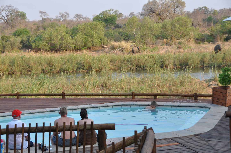 Sabie River Bush Lodge Kruger National Park South Africa