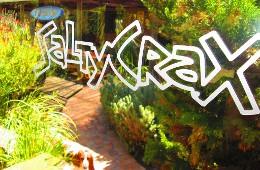 Saltycrax Backpackers/ Surf Lodge Cape Town