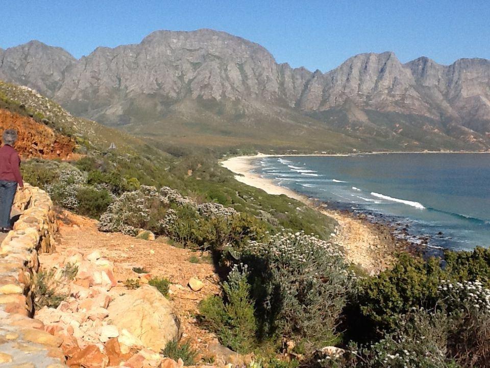The Wild Fig Kleinmond South Africa