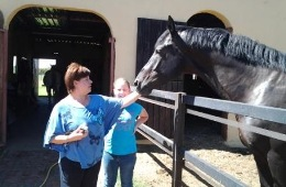 Tierra Pequena B&B and Equestrian Estate