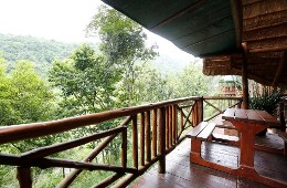 Tree House River Lodge Durban