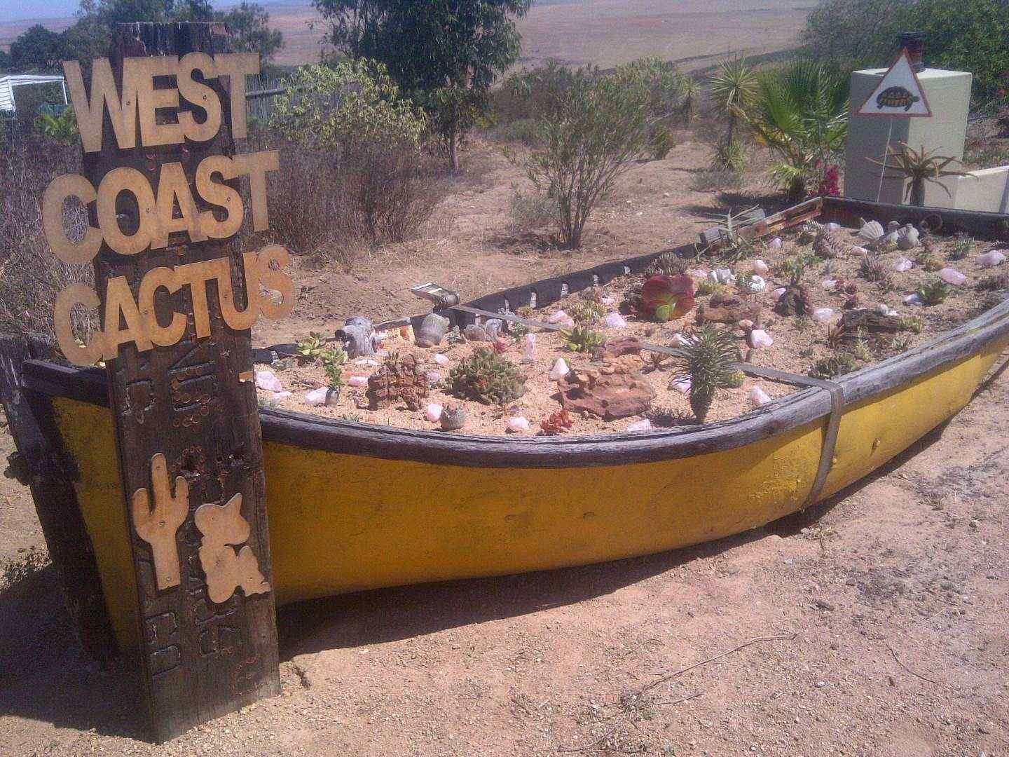 West Coast Cactus Self Catering Holiday Apartment St