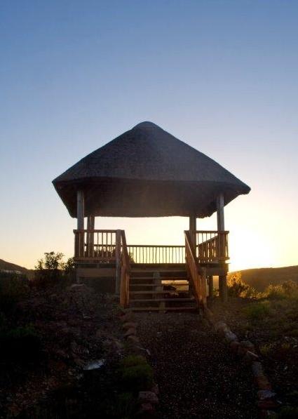 Zandibela Private Game Lodge Willowmore South Africa